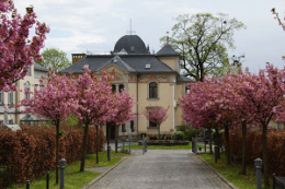 Villa-Zufahrt